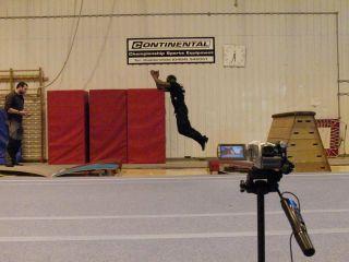 Parkour athletes mimic orangutan-jumping behavior between compliant platforms.