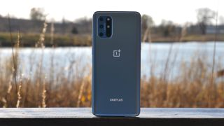 OnePlus 8T with a pond in the background
