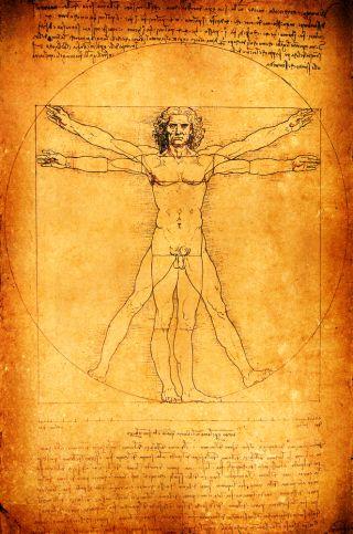 Leonardo da Vinci's Vitruvian Man, drawn c. 1490. Credit: Janaka Dharmasena | Shutterstock