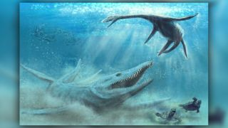 Pliosaurs were apex predators in Jurassic oceans.