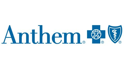 Anthem Blue View Vision review