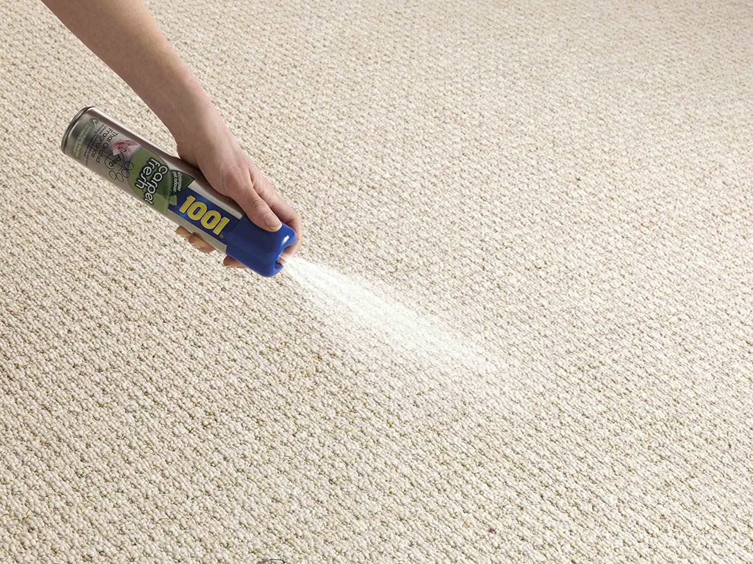 The best carpet cleaning products