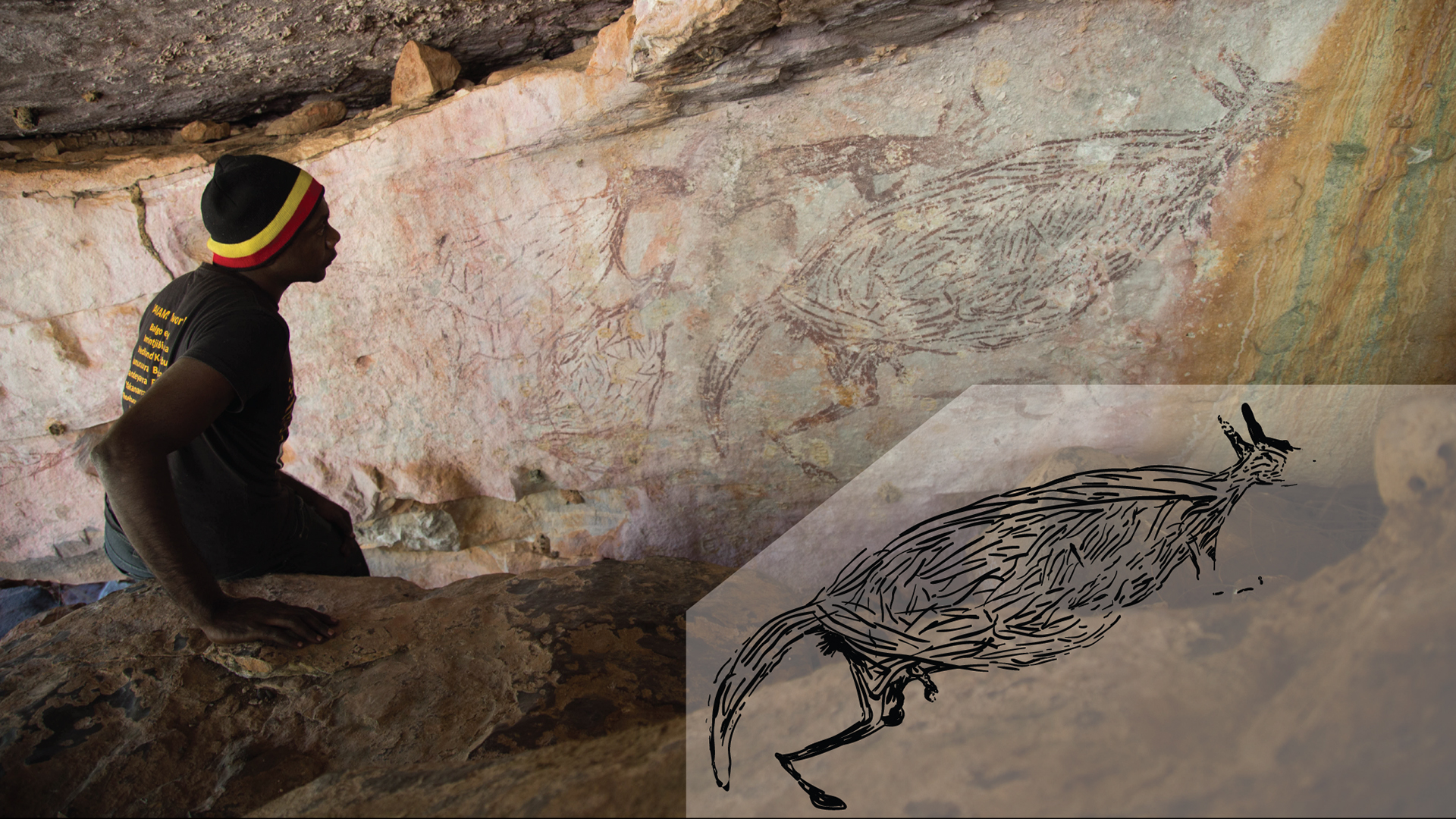 Traditional owner Ian Waina inspects a painting of a kangaroo that is more than 12,700 years old, based on the age of overlying mud wasp nests. Inset: an illustration of the rock painting just above it.