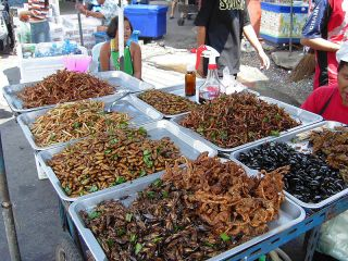 Deep-fried insects for sale at a food stall in Bangkok, Thailand. Credit: Takoradee | Creative Commons