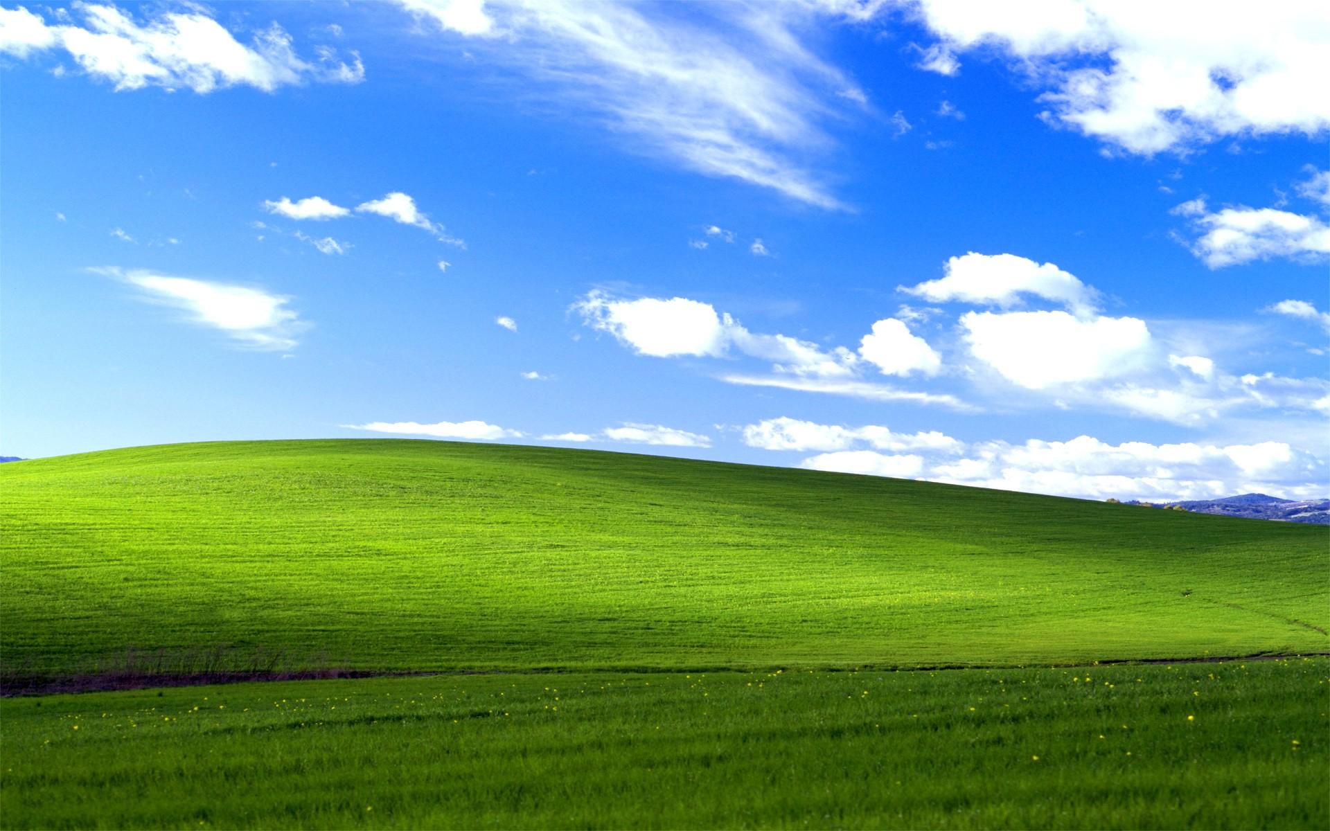 Windows XP main wallpaper