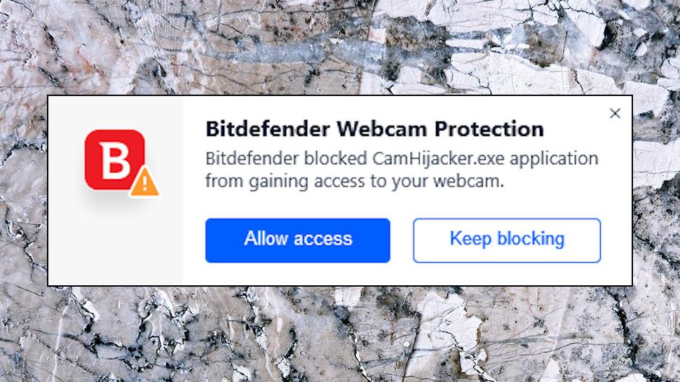 Webcam Alert