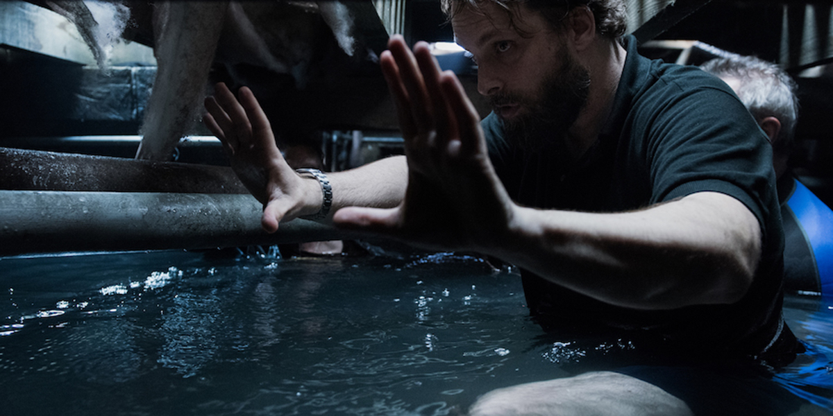 Alexandre Aja on the set of his film Crawl
