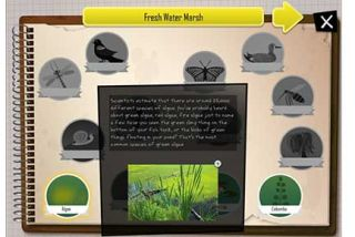 Kids Build Virtual Biomes With This Ecology App