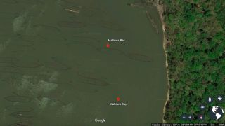 Military shipwrecks dating as far back as the Revolutionary War and including ships from the Civil War and both World War I and World War II were deliberately sunk here at Mallows Bay in Maryland.
