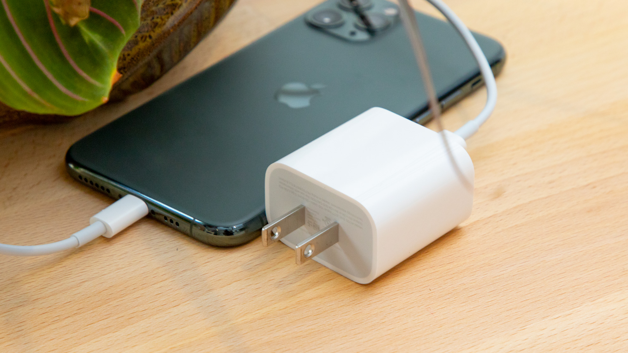 iphone 12 20 w charger