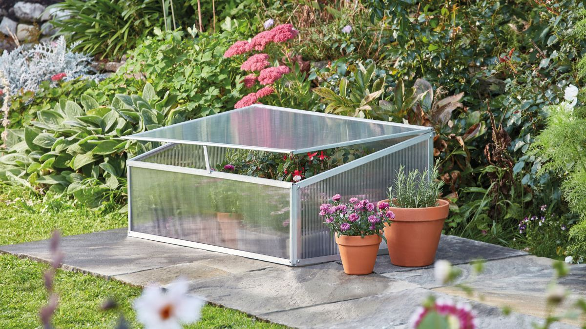 5 ways to use cold frames and cloches in your garden