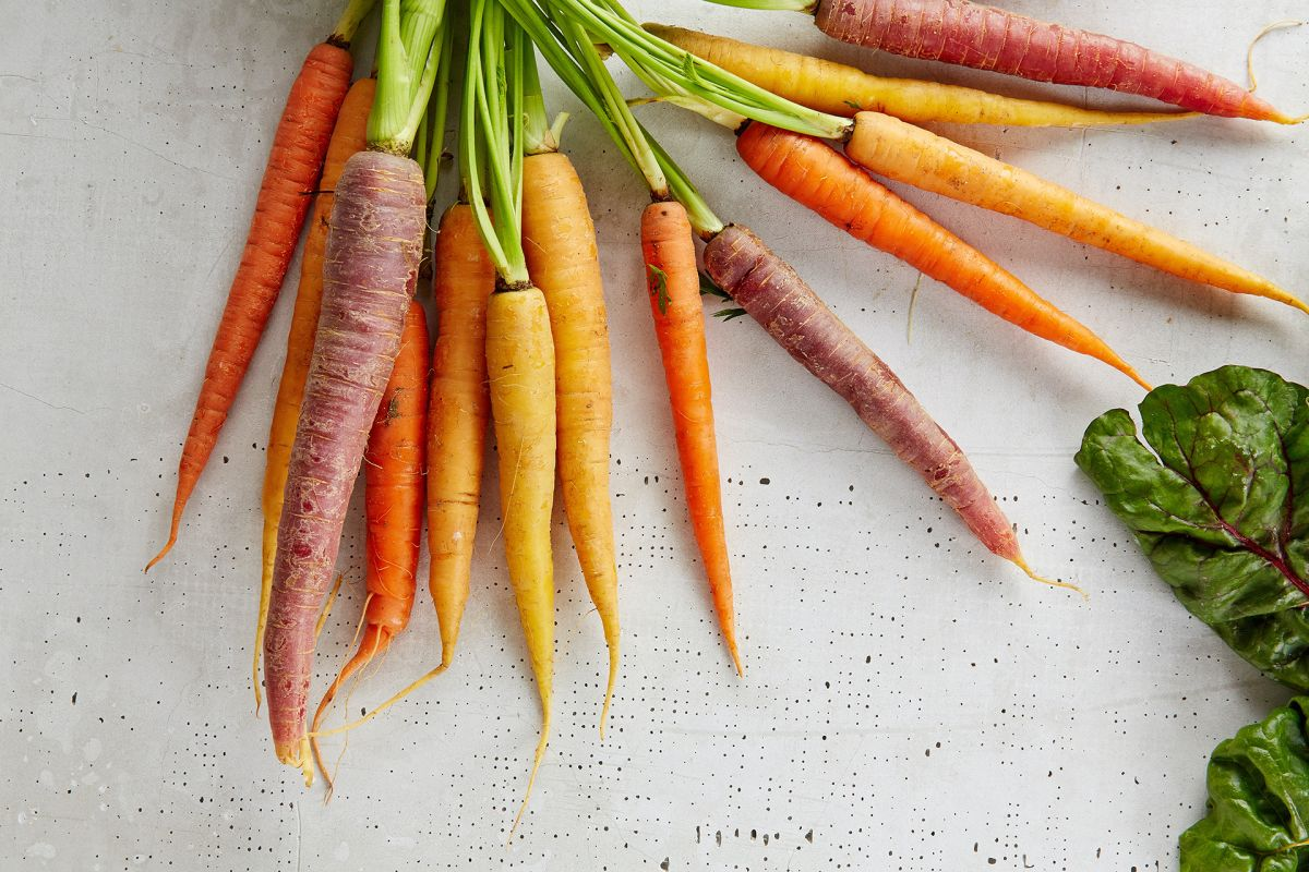 Carrot companion planting – the best plants to grow with carrots