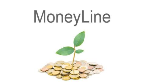 MoneyLine personal finance software review