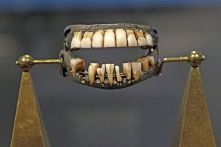 What Were George Washingtons Teeth Made Of Its Not Wood Live