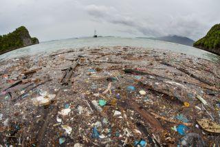 plastic pollution, microplastic