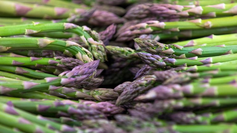 Monty Don's asparagus growing tips