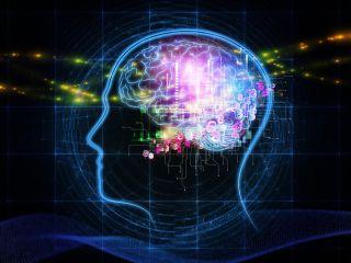 Human intelligence, future