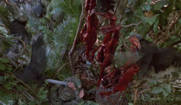 The Predator victims hanging in a tree