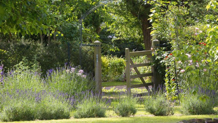 Garden gates, tips and ideas