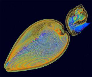 science visualization winners