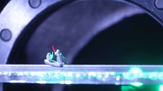 The innovation of optical trap technology, expressed with a tiny lightsaber battle