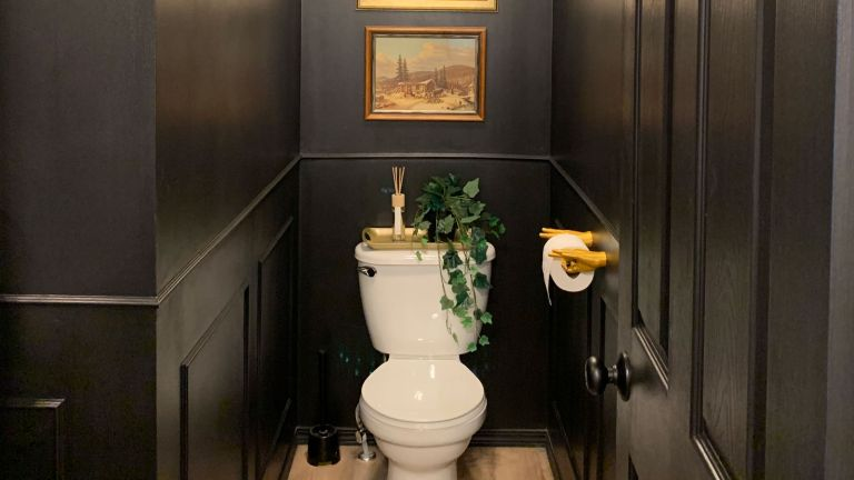 downstairs toilet with dark walls