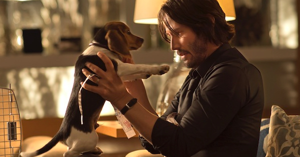John Wick Review with Keanu Reeves dog
