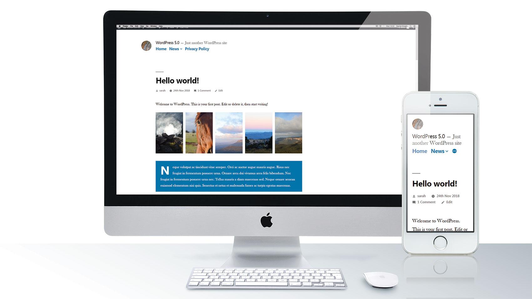 What's new in WordPress 5.0?