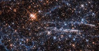 The Tarantula and Honeycomb Nebulas