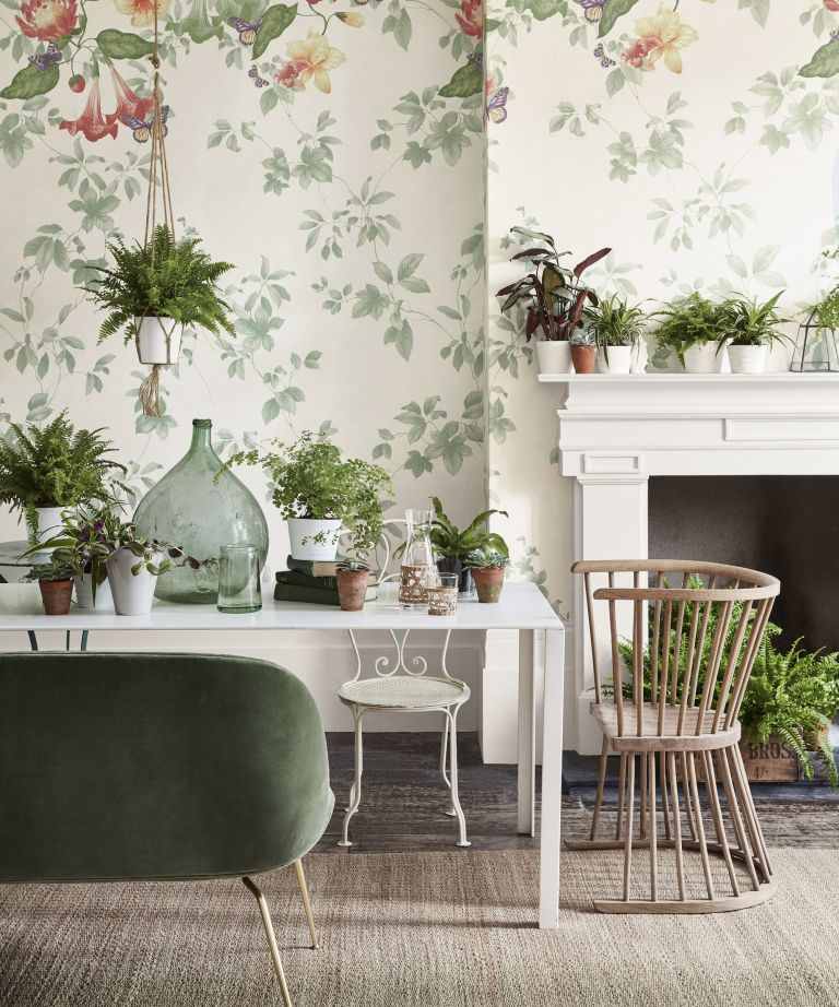 house plants in winter dining room
