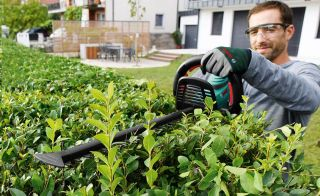 Best hedge trimmers guide