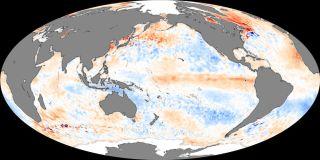 El Nino conditions in place in 2006