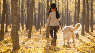 Dog walking ban: A chinese girl walking her dog
