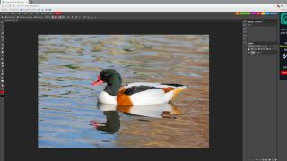 How to edit photos online with Photopea | TechRadar