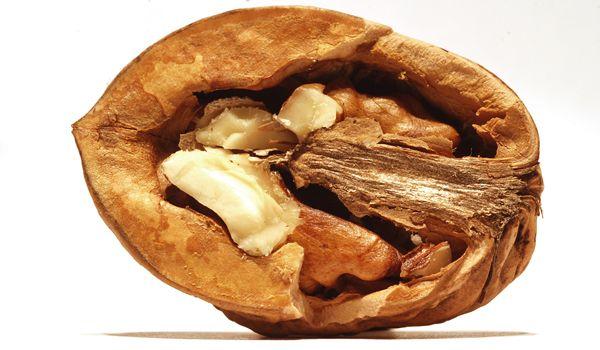 Health Nut: Walnuts Offer Huge Amount of Antioxidants | Live