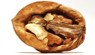 Health Nut: Walnuts Offer Huge Amount of Antioxidants | Live