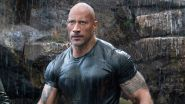 Dwayne Johnson Has Another Look-Alike, And This One Will Help You Move