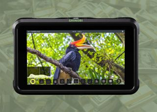 Atomos Shinobi drops to $299 from $399 in incredible US deal