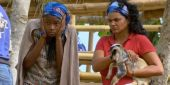 The Insane True Story Behind Those Goats On Survivor, According To One Contestant