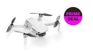 Amazing Amazon drone deal! DJI Mavic Mini kit slashed to $399 on Prime Day