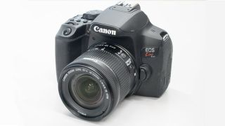 Canon Rebel T8i / 850D