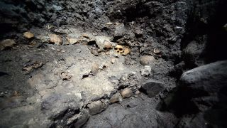 Skulls discovered at the Aztec 'trophy' excavation site in 2015.