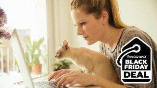 Five best Black Friday pet deals at Amazon