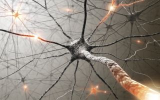 Scientists can use light to switch on a neuron.