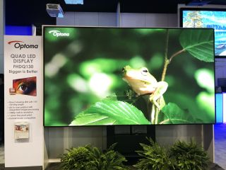 Frog on an LED Display