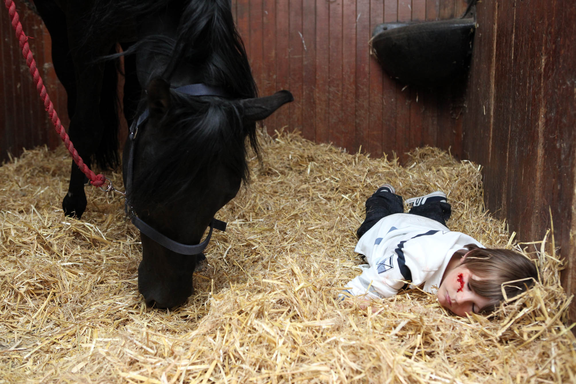 Will is knocked unconscious in the stables!