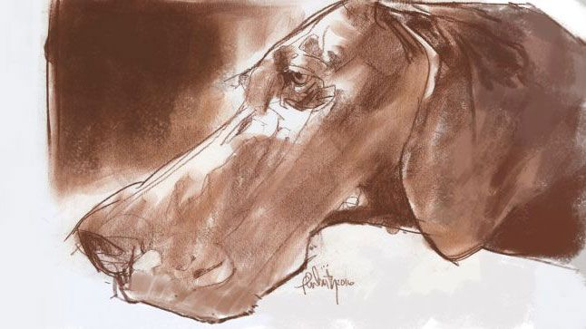10 expert tips for charcoal drawing