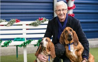Paul O' Grady: For The Love of Dogs at Christmas