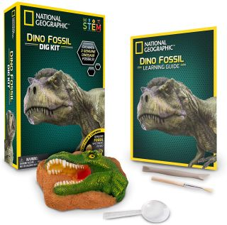 National Geographic dinosaur digging kit