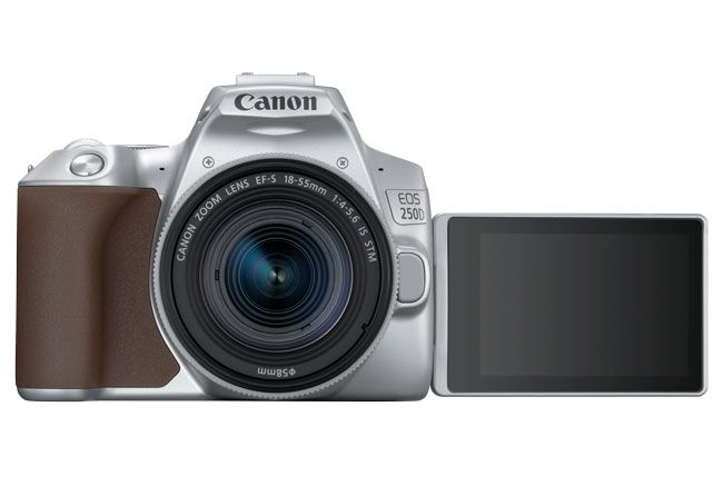 The best camera in 2019: which one is right for you